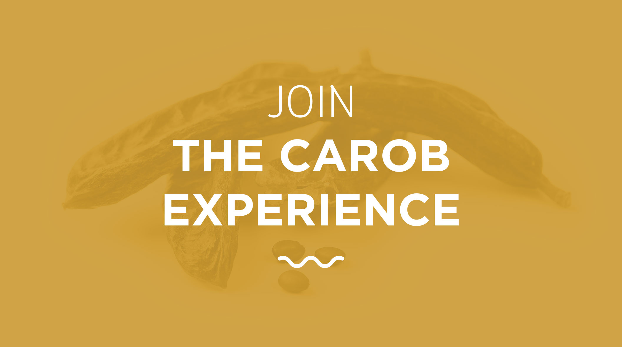 JOIN THE CAROB EXPERIENCE