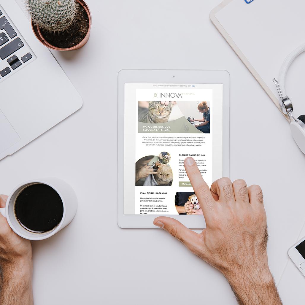 Newsletter para empresas